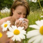 Witryna o alergiach – tekst dla alergików
